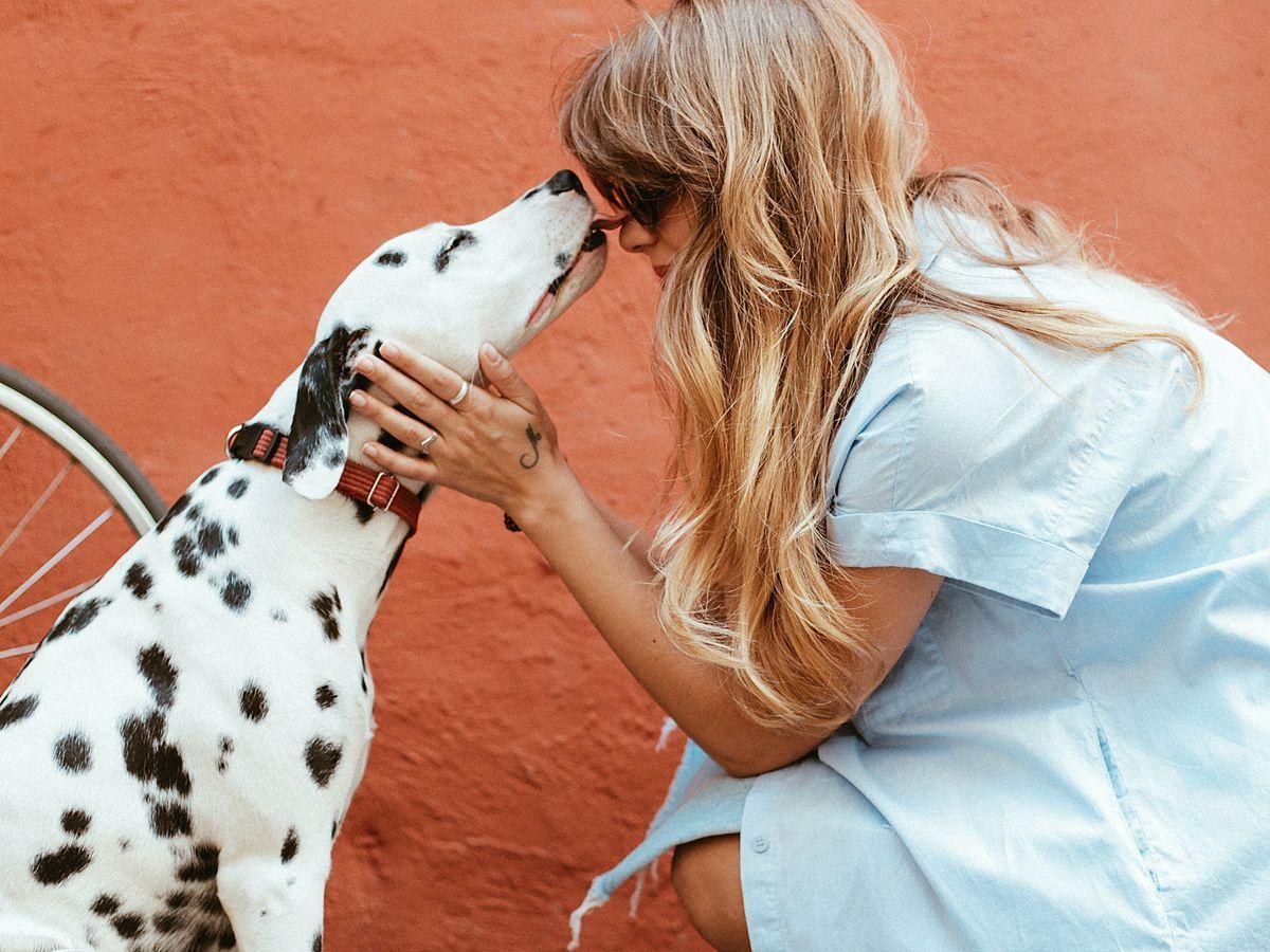 Haben mit frauen hunden sex Der leckende