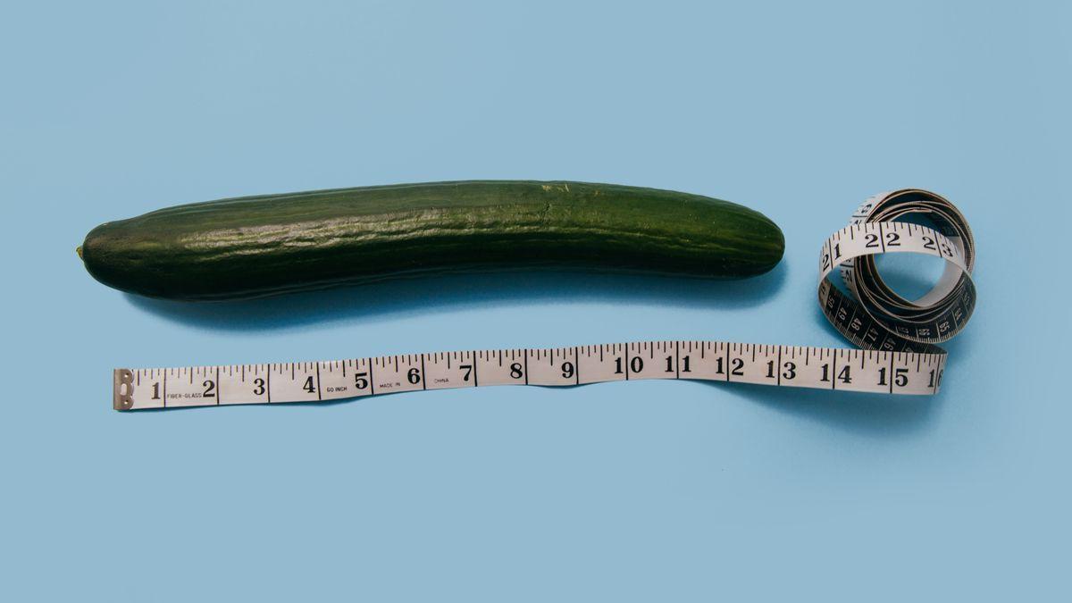 Langster penis der welt