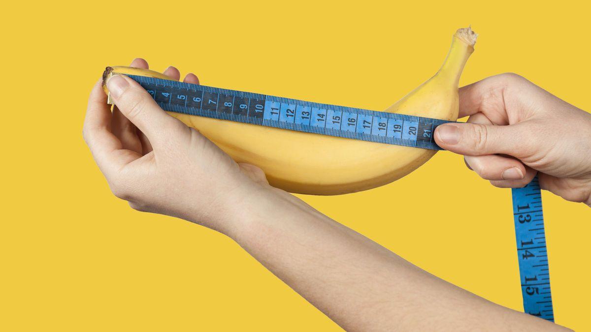 Der mensch peni längster welt grösster penis