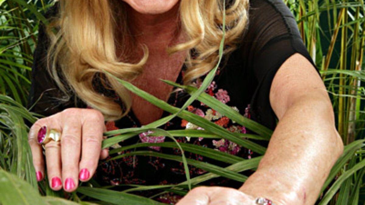 Ingrid Van Bergen Im Dschungelcamp