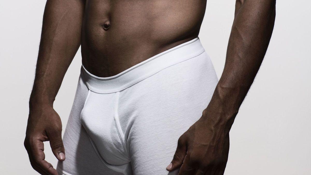 längster menschlicher penis