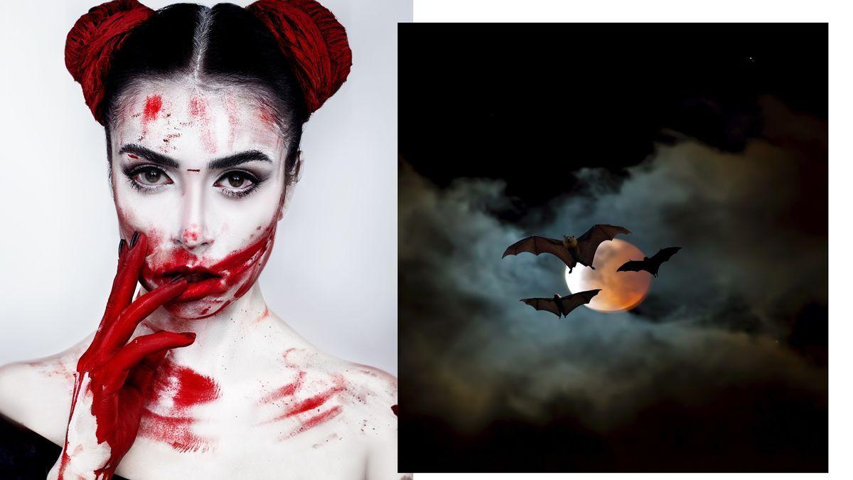 Vampir Make Up Halloween Fur Kurzentschlossene