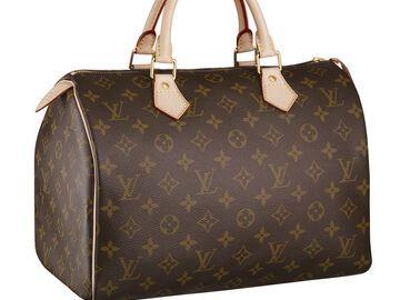 c3528cc909fe6 Die Louis Vuitton Tasche