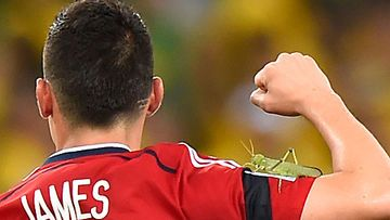 james-rodriguez-insekten-attacke-1967304.jpg